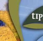 Tipicità: eccellenze marchigiane. Fermo, 21-23 aprile