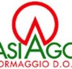 Asiago: il primo al controllo dell'analisi sensoriale