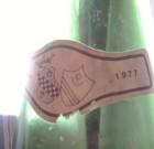 Apro una bottiglia di Pinot Grigio 1977 di Volpe Pasini e…