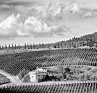 Nel calendario di Caffè River, la Toscana