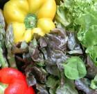 Le cucine regionali. Settima puntata: Lazio