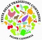 A Palma Campania, la Festa delle tradizioni contadine