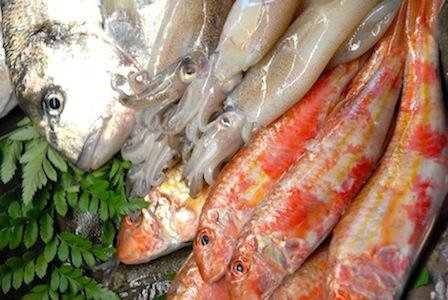 pesciingruppobis